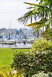 Marina Park Royalty Free Stock Photography