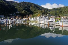 The marina at Picton with reflection, New Zealand royalty free stock photo