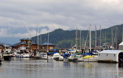Marina. Busy Harbour on West Coast of Canada Royalty Free Stock Image