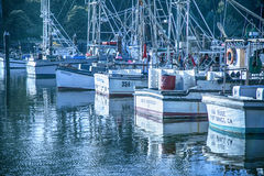 Marina pier. At Mendocino Coast full of the luxury and fisherman boats waiting for clients and fishing Stock Images