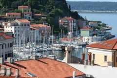 Marina  of Piran VII Royalty Free Stock Photography