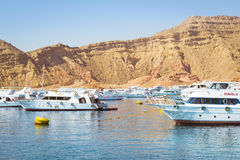 Marina: Pleasure sightseeing boats on the Parking lot of boat Pa Royalty Free Stock Photos