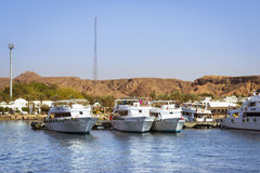 Marina: Pleasure sightseeing boats on the Parking lot of boat Pa Royalty Free Stock Photography