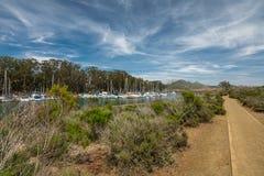 Marina Point Loop Trail Goes attraverso l'estuario e una foresta scherzosa vicino al porto al parco di stato della baia di Morro, immagini stock