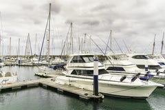 Marina in Puerto Calero Stock Image