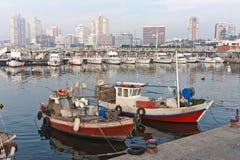 Marina Punta del Este Uruguai Fotografia Stock