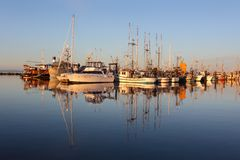 Marina Reflection, Steveston Morning Stock Photo