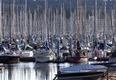 Marina Sailboats and Masts Royalty Free Stock Photo