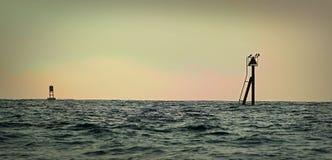 marina seattle washington för hamn för fjärddockelliott Arkivbild