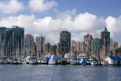 Marina in Stanley Park. View on Downtown Vancouver and marina from Stanley Park royalty free stock image