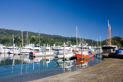 Marina at sunny day. Picton marina in northern tip of South Island, New Zealand royalty free stock images
