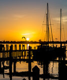 Marina sunset with sailboats and birds Royalty Free Stock Images