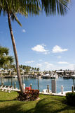 Marina tropicale Photo libre de droits