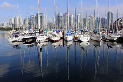 A marina in Vancouver Stock Images