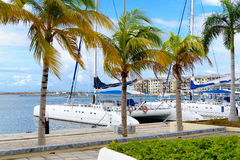 Marina at Varadero beach in Cuba royalty free stock photo