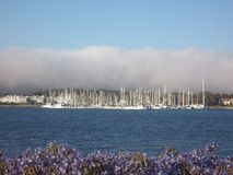 Marina Way Yacht Harbor Imagem de Stock