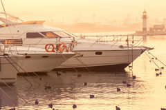 Marina with yacht Royalty Free Stock Images