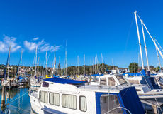 Marina with yachts and boats in beautiful blue sky day. Stock Photo