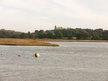 Marinabollboj som svävar på vattenplatslandskap royaltyfri fotografi