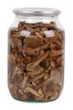 Marinaded mushrooms Royalty Free Stock Photography