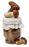 Marinaded mushrooms isolated on white background Stock Photos