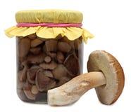 Marinaded mushrooms Royalty Free Stock Photo