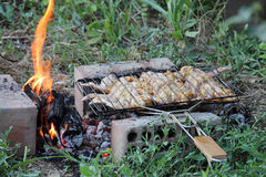 Marinaded wings on a lattice for a barbecue over a brazier Royalty Free Stock Image