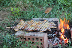 Marinaded wings on a lattice for a barbecue over a brazier Stock Image