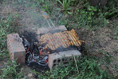 Marinaded wings on a lattice for a barbecue over a brazier Royalty Free Stock Images