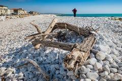 MARINADI PISA, ITALIEN - Avril 24, 2017: Sikt av havet och royaltyfria bilder