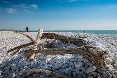 MARINADI PISA, ITALIEN - Avril 24, 2017: Sikt av havet och arkivfoto