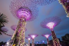 MARINAFJÄRD, SINGAPORE, MARS 16, 2015: Stor natt för trädljusshow Royaltyfri Fotografi