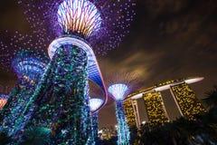MARINAFJÄRD, SINGAPORE, MARS 16, 2015: Stor natt för trädljusshow Arkivfoto