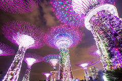 MARINAFJÄRD, SINGAPORE, MARS 16, 2015: Stor natt för trädljusshow Royaltyfria Bilder