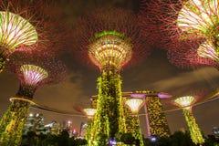 MARINAFJÄRD, SINGAPORE, MARS 16, 2015: Stor natt för trädljusshow Arkivbilder