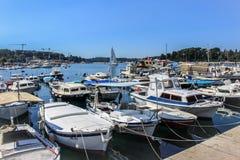 Marinaio e gabbiano della Croazia Fotografia Stock Libera da Diritti