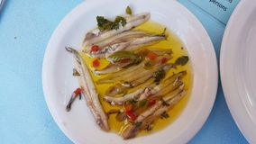 Marinate anchovies traditional greek sea plat. E with raw fish Stock Photos