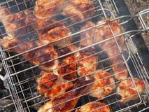Marinated зажаренная нога цыпленка Стоковое фото RF