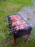 Marinated мясо сварено на углях стоковые фотографии rf