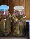 Marinated овощи в опарниках Стоковые Фотографии RF