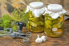 Marinated огурцы, огурцы в шаре, комплекте соленья огурца Стоковое Фото