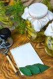 Marinated огурцы, огурцы в шаре, комплекте соленья огурца Стоковое фото RF