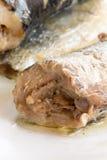 Marinated сардины, который служат на плите Стоковые Фотографии RF
