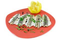 Marinated anchovies stock image