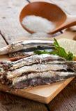 Marinated anchovies Stock Photos