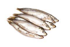 Marinated anchovies isolate on a white background Stock Photo