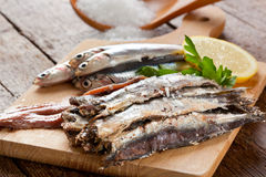 Marinated anchovies stock images