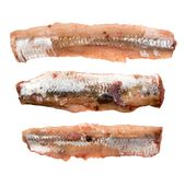 Anchovy filet isolated. Marinated anchovy isolated on white background. Fish filet with clipping path. Flat lay and top view Royalty Free Stock Photo
