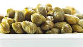 Marinated capers Royalty Free Stock Images