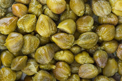 Marinated capers background Stock Photos